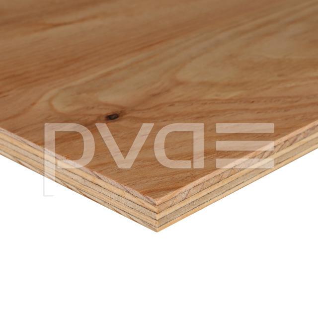 seekiefer sperrholzplatte utipin tebopin 3 roh qual iii schiefer turm von pisa eintrittspreise